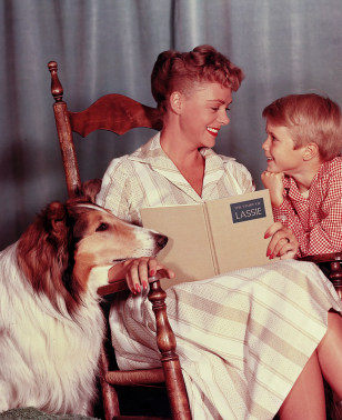 IMAGE: Lassie