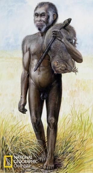 artist's rendering of Homo floresiensis
