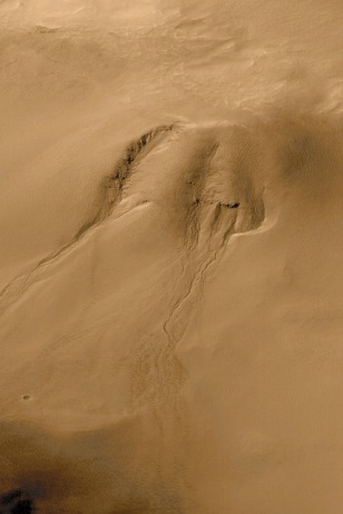Image: Martian gullies