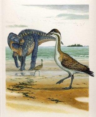 Image: Vegavis with hadrosaur