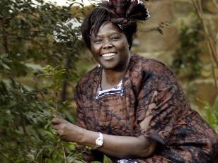 Kenyan Nobel peace prize winner Wangari Maathai.