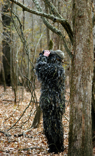 Bird searcher looks for signs of woodpecker