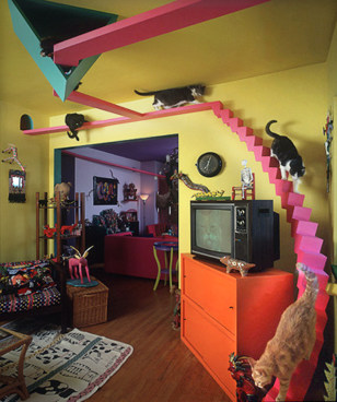 Pet-friendly homes for your furry family - Health - Pet health | NBC on copy cat chic nursery room design, cat shelves, cat bathroom accessories, cat room house design, cat condo from old dresser, cat house home design, cat staircase design, cat chair, cat wall walks designs, cat interior design, cat from home, cat stairs, cats in the kitchen design,