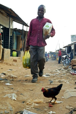 Nigerian man walks past chicken roaming on streets of Abuja. An outbreak could have devastating consequences in Nigeria, Africa's most populous country, where millions of people have chickens in their backyards.