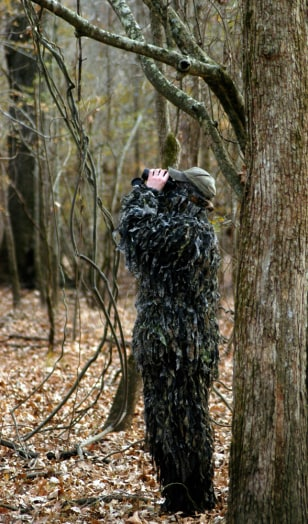 Image: Looking for birds in Arkansas