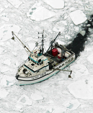 IMAGE: BOAT IN SEAL HUNT AREA