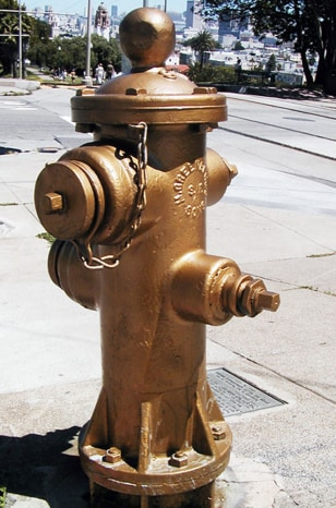 San Francisco's Golden Fire Hydrant.