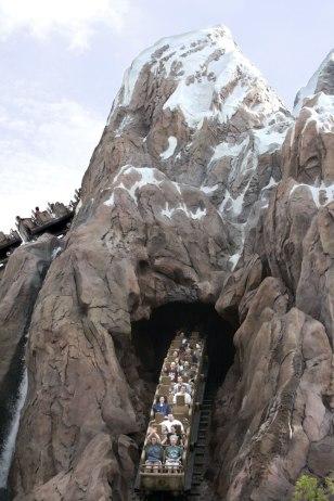 Image: Roller coaster.