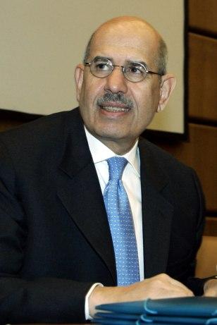 Image: Mohamed ElBaradei
