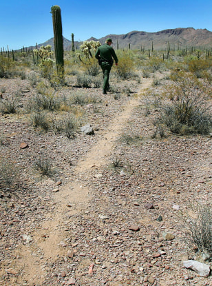 IMAGE: TRAIL MADE BY ILLEGAL IMMIGRANTS INSIDE PARK