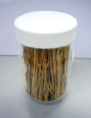 IMAGE: RICE STRAW USED TO MAKE ETHANOL