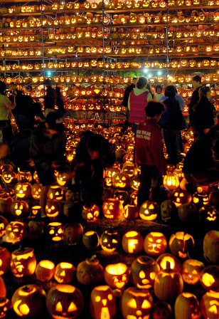 Image: Thousands of 'Jack-o'-lanterns'