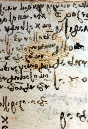 Image: Leonardo fingerprint