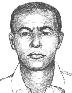 IMAGE: Police sketch of suspect