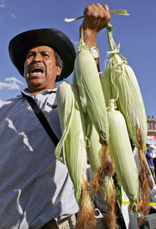 Image: Peasant with corn at protest.