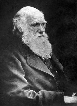 Image: Charles Darwin