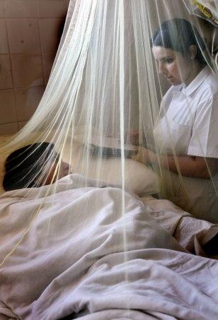 Image: Adriana Amarilla and Cynthia Figueredo