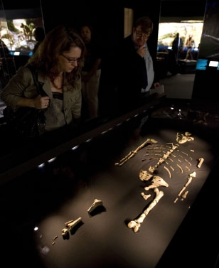 Image: 'Lucy' exhibit