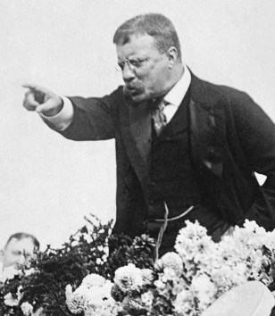 Image: Teddy Roosevelt