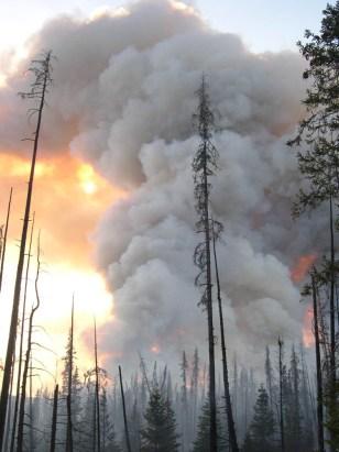 FIRE IN ALASKA