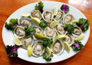 Image: Oysters