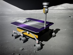 Image: White Label rover