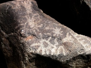 Cavemen and cave bears battled over turf - Technology & science