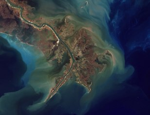 Image: effluents deposited at the Mississippi River delta