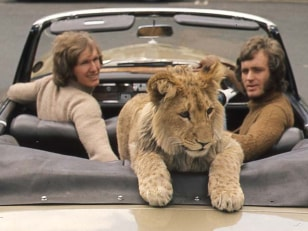 "Image: Anthony ""Ace"" Bourke, John Rendall and Christian the lion"