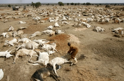 Image: Drought-stricken region in Kenya