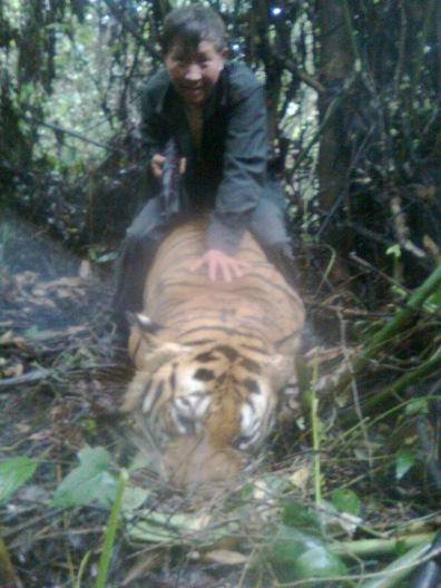 Image: Poacher sits atop dead tiger