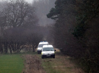 Image: Police forensic vehicles at the scene in woods where human remains were found