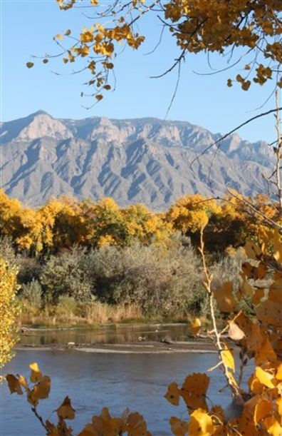 Image: The Rio Grande River flows near Albuquerque, N.M., as the cottonwoods begin to change colors in late October.