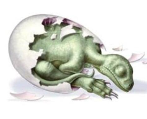 Image: Dinosaur embryo