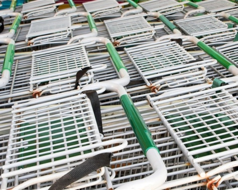 Image: shopping carts