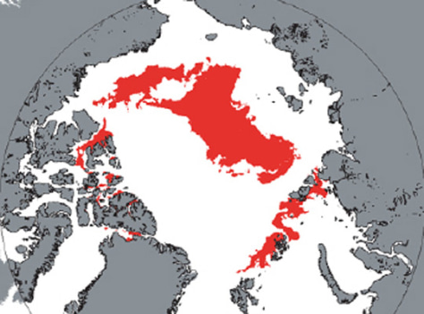 Image: Arctic map