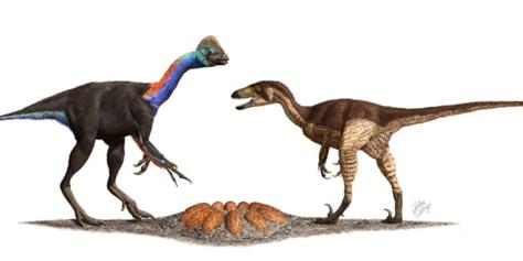 Image: Dino eggs