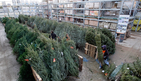 Image: Home Depot Christmas trees