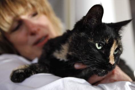 Image: Lisa Kelsey pets her foster cat Blaze