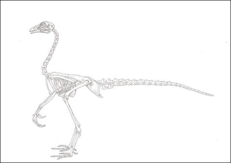 Image: Dinochicken