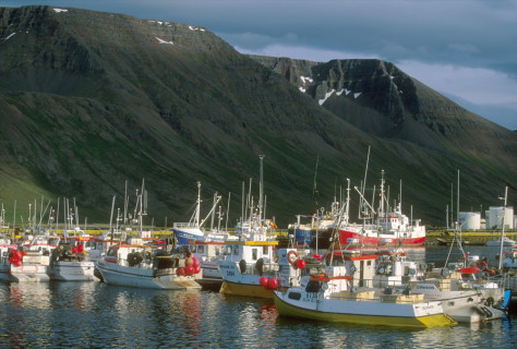 Image: Fishing boats in Iceland