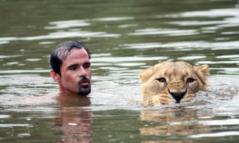 Image: Kevin Richardson is known as the 'Lion Whisperer'