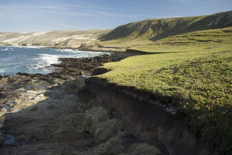 Image: Eroded cliff on San Miguel Island