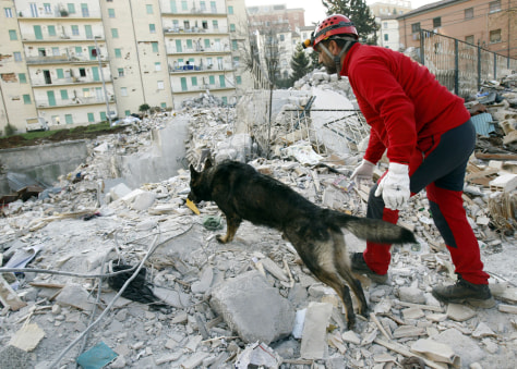 Image: Spanish rescue team and a dog in L'Aquila, Italy