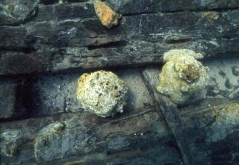 Image: Cannonballs found among ship wreckage