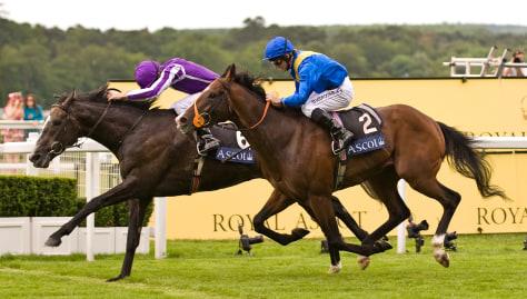 Image: Jockeys