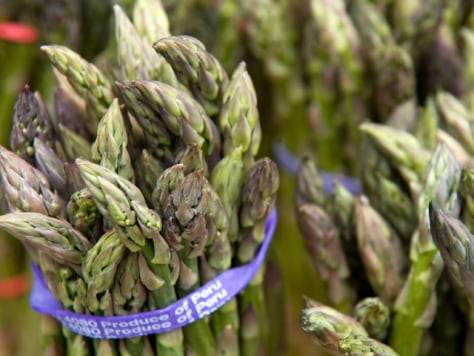 Natural super glue found on asparagus spears - Technology & science