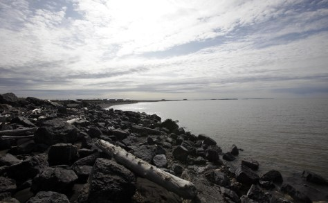 Image: The shore line from Tuktoyaktuk, in the Northwest Territories, Canada