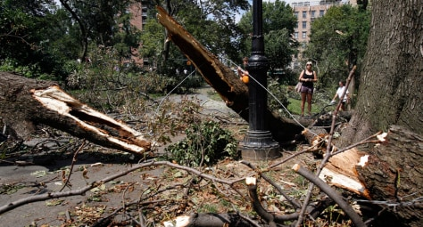 Image: A woman looks at downed trees in New York's Central Park
