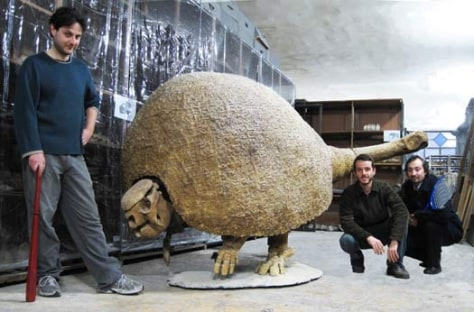 Image: Glyptodont skeleton